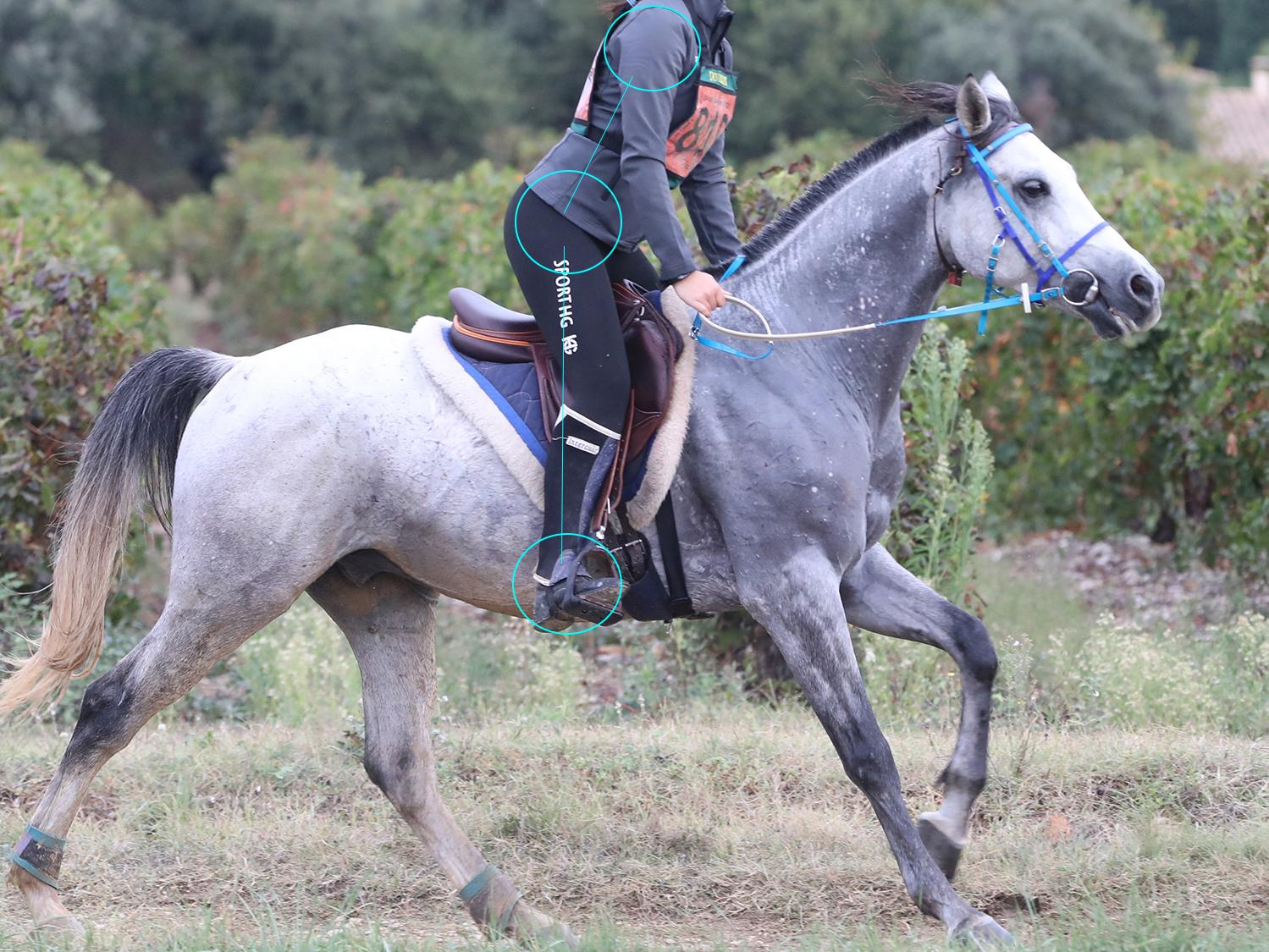 Alignement du corps en équilibre à cheval