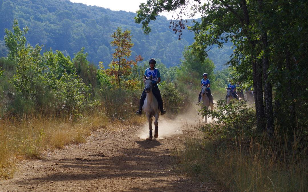 roadbook endurance équestre