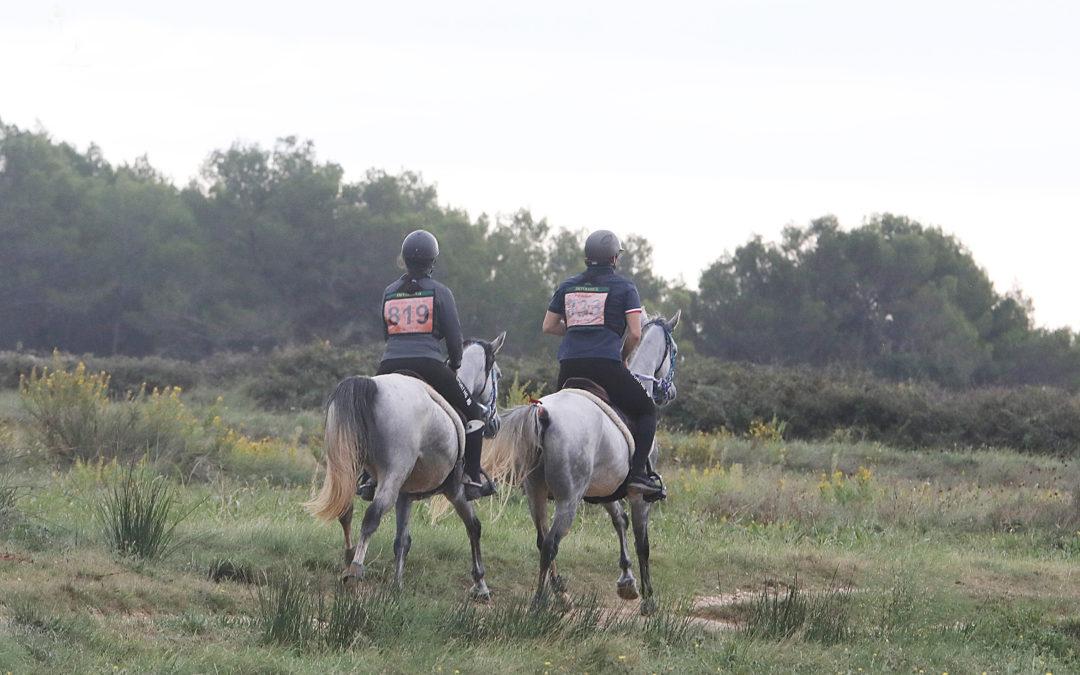 endurance équestre uzès
